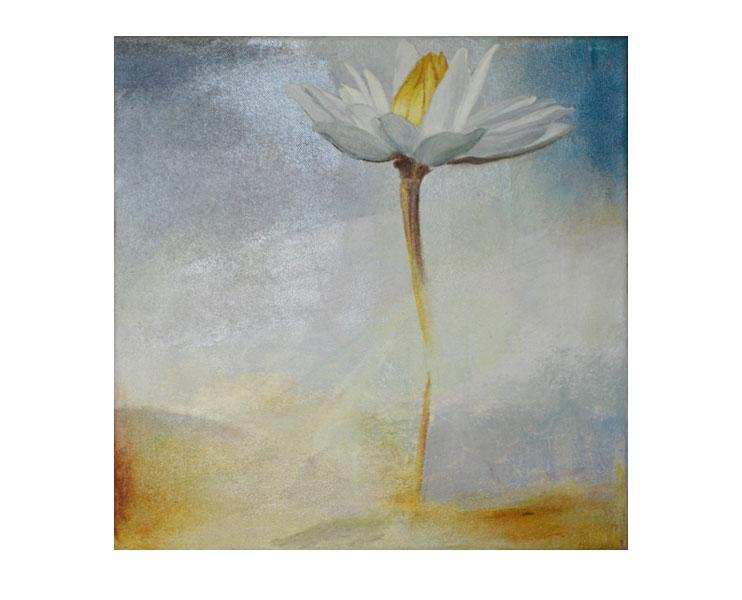Patricia's Lotus
